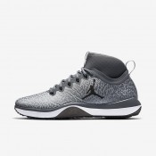 Nike Air Jordan Trainer 1 Cool Grey/Infrared 23/Black Mens Training Shoes